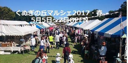 201705kunugi1.jpg