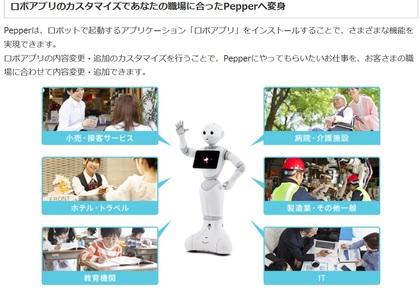 pepperB2.jpg